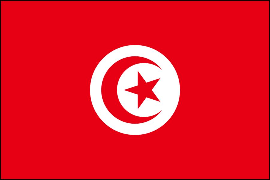 Tunisia bandiere